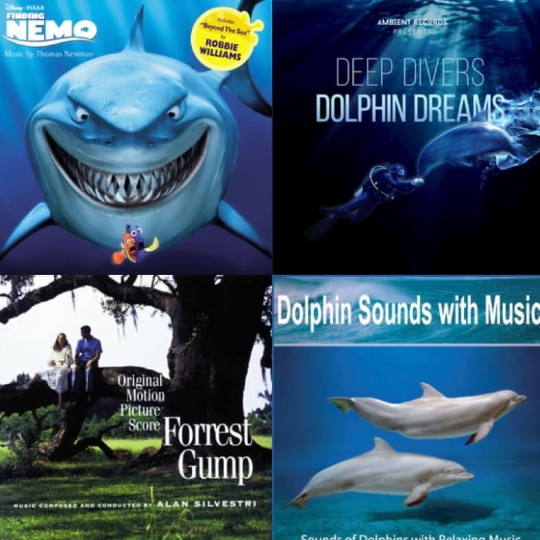 05-Spotify-Unterwasserflora